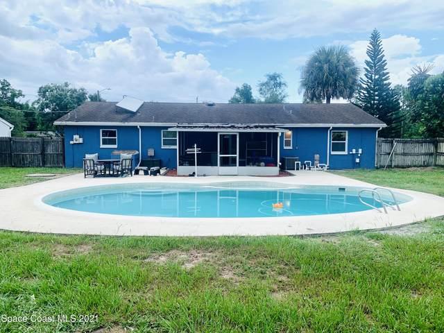 266 Pigeon Avenue NE, Palm Bay, FL 32907 (MLS #910887) :: Keller Williams Realty Brevard