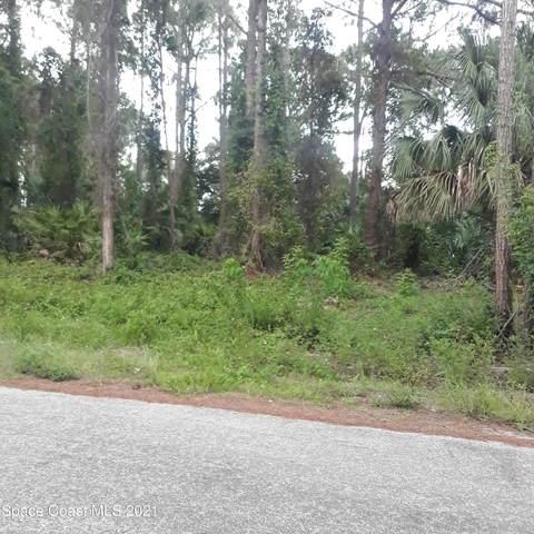 243 Dobbins Road NW, Palm Bay, FL 32907 (MLS #910977) :: Keller Williams Realty Brevard