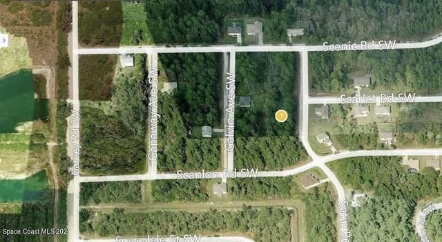 1066 SW Satin Road SW, Palm Bay, FL 32908 (MLS #910980) :: Blue Marlin Real Estate