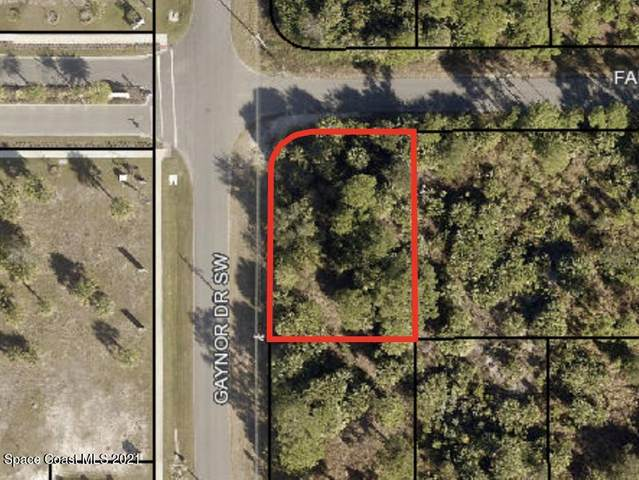0000 Unknown Drive SW, Palm Bay, FL 32908 (MLS #911023) :: Blue Marlin Real Estate
