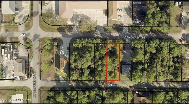 1820 Canova Street SE, Palm Bay, FL 32909 (MLS #911207) :: Keller Williams Realty Brevard