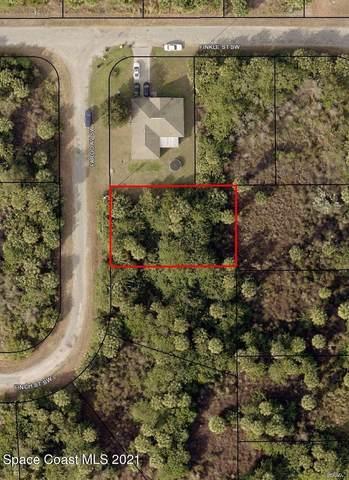 3321 Fargo Avenue SW, Palm Bay, FL 32908 (MLS #911231) :: Armel Real Estate