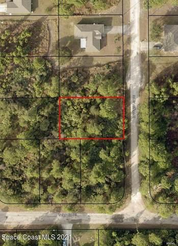 3070 Gaffney Avenue SE, Palm Bay, FL 32909 (MLS #911233) :: Blue Marlin Real Estate