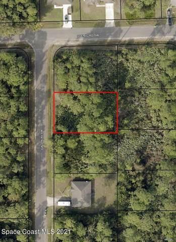1009 Galvin Avenue SW, Palm Bay, FL 32908 (MLS #911235) :: Blue Marlin Real Estate