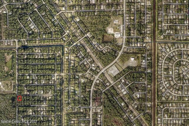 498 Lackland Street SW, Palm Bay, FL 32908 (MLS #911261) :: Blue Marlin Real Estate