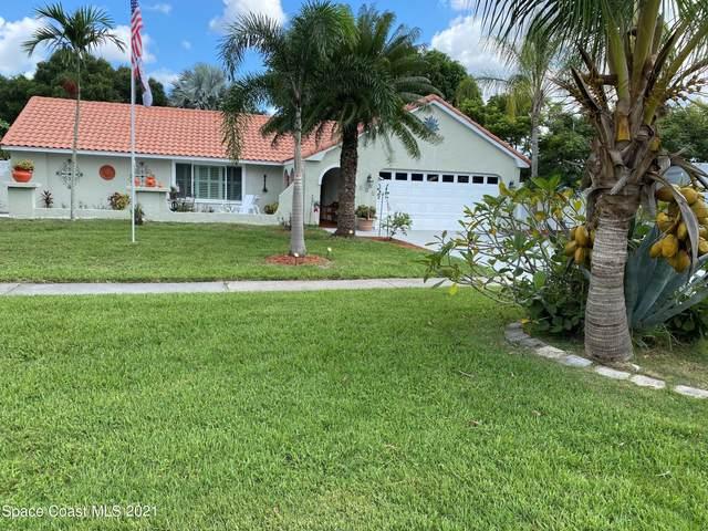 895 Riviera Drive NE, Palm Bay, FL 32905 (MLS #911357) :: Dalton Wade Real Estate Group