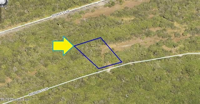 947 Rounding Street SW, Palm Bay, FL 32908 (MLS #911359) :: Blue Marlin Real Estate