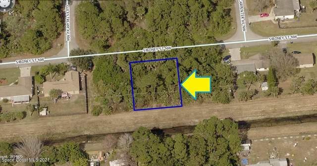 1042 Siboney Street NW, Palm Bay, FL 32907 (MLS #911436) :: Vacasa Real Estate