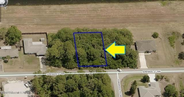 1101 Serenade Street NW, Palm Bay, FL 32907 (MLS #911437) :: Vacasa Real Estate