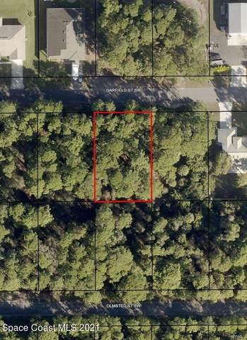 450 Garfield Street SW, Palm Bay, FL 32908 (MLS #911502) :: Blue Marlin Real Estate