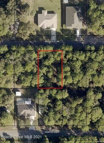 466 Garfield Street SW, Palm Bay, FL 32908 (MLS #911503) :: Blue Marlin Real Estate