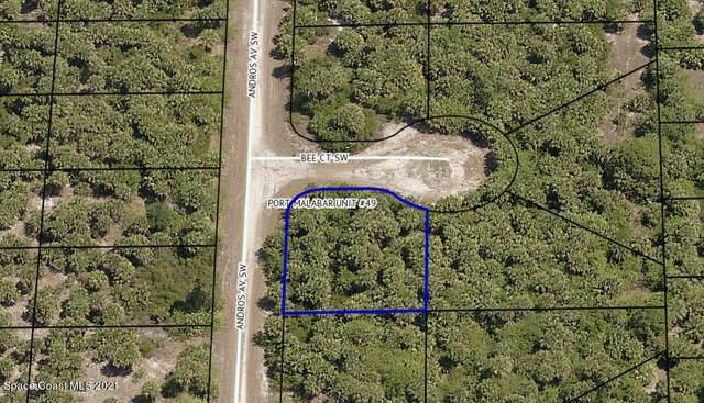 2425 Andros Avenue, Palm Bay, FL 32908 (MLS #911514) :: Vacasa Real Estate