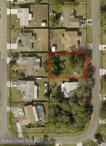 1138 Porter Avenue NW, Palm Bay, FL 32907 (MLS #911717) :: Vacasa Real Estate