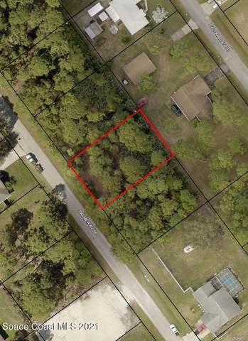 2635 Palmer Avenue SE, Palm Bay, FL 32909 (MLS #911718) :: Blue Marlin Real Estate