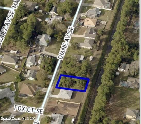 2631 Diane Avenue SE, Palm Bay, FL 32909 (MLS #911743) :: Blue Marlin Real Estate