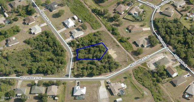 2997 Creech Avenue SE, Palm Bay, FL 32909 (MLS #911755) :: Premier Home Experts