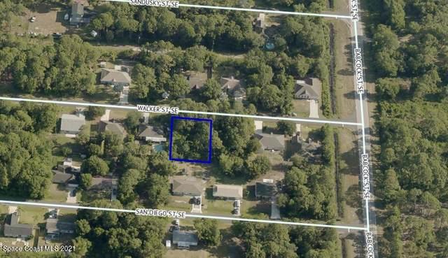 1670 Walker Street SE, Palm Bay, FL 32909 (MLS #911758) :: Vacasa Real Estate