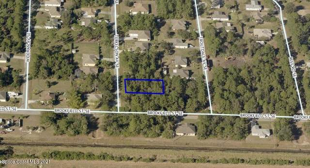 3289 Terkelson Avenue, Palm Bay, FL 32909 (MLS #911762) :: Blue Marlin Real Estate