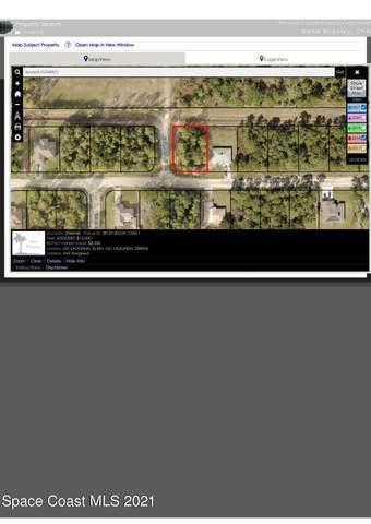 305 Dailey Street SE, Palm Bay, FL 32909 (MLS #911763) :: Blue Marlin Real Estate