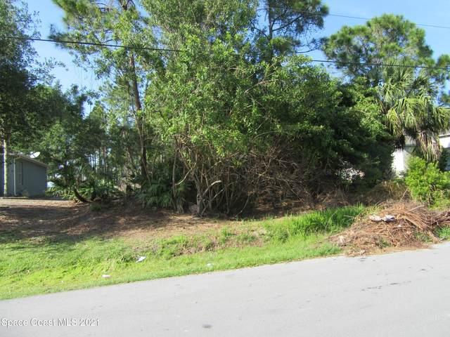 3117 Wendel Road SE, Palm Bay, FL 32909 (MLS #911766) :: Blue Marlin Real Estate