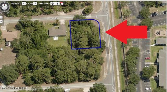 602 Toni Street SW, Palm Bay, FL 32908 (MLS #911790) :: Blue Marlin Real Estate