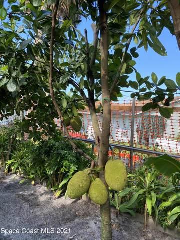 1024 Porpoise Drive, Rockledge, FL 32955 (MLS #911810) :: Blue Marlin Real Estate
