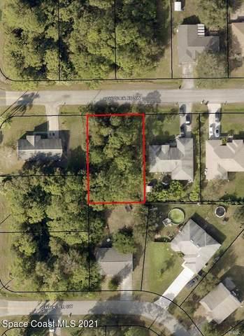 716 Schuster Road SW, Palm Bay, FL 32908 (MLS #911832) :: Dalton Wade Real Estate Group