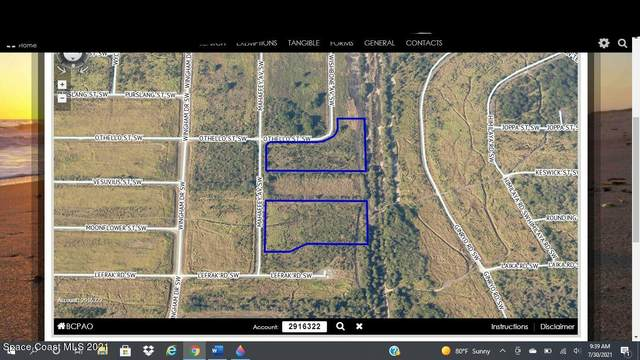 000 Mahaffey (Not Assigned) Avenue SW, Palm Bay, FL 32908 (MLS #911845) :: Premium Properties Real Estate Services
