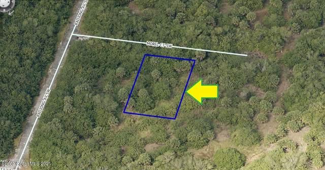 972 Morel Court SW, Palm Bay, FL 32908 (MLS #913772) :: Blue Marlin Real Estate