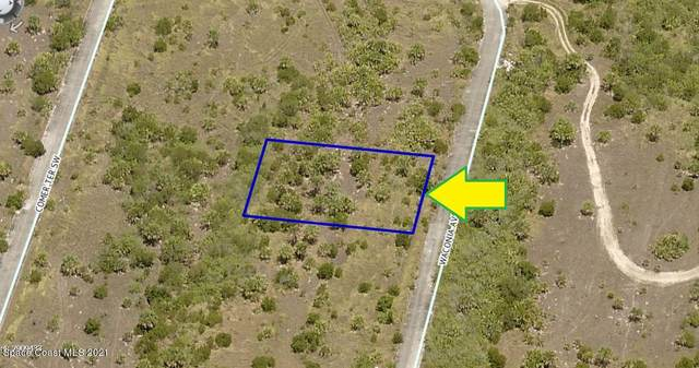 1918 Waconia Avenue SW, Palm Bay, FL 32908 (MLS #913776) :: Blue Marlin Real Estate