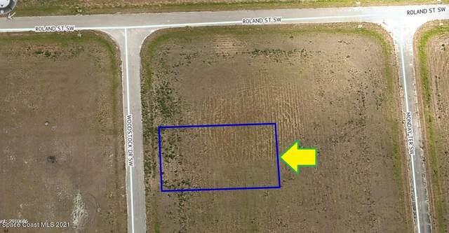 2217 Woodstock Drive SW, Palm Bay, FL 32908 (MLS #913779) :: Blue Marlin Real Estate