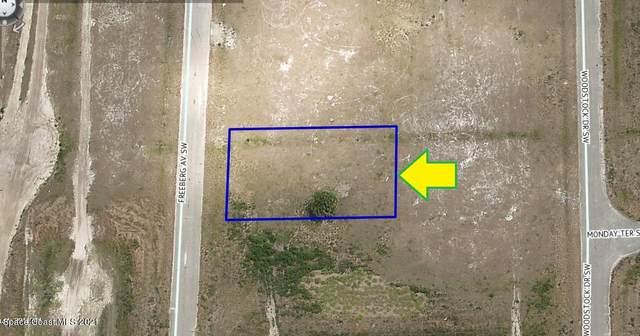 2279 Freeberg Avenue SW, Palm Bay, FL 32908 (MLS #913780) :: Blue Marlin Real Estate