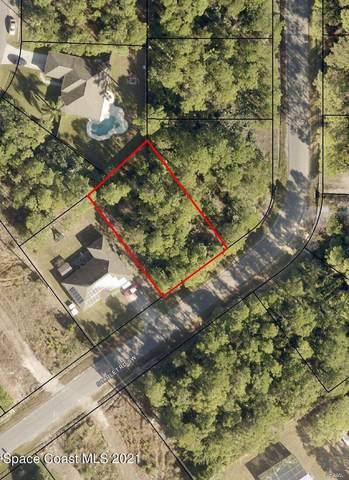 431 Scarlet Road SW, Palm Bay, FL 32908 (MLS #914354) :: Vacasa Real Estate