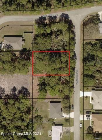 1036 Flintlock Avenue SE, Palm Bay, FL 32909 (MLS #915067) :: Blue Marlin Real Estate