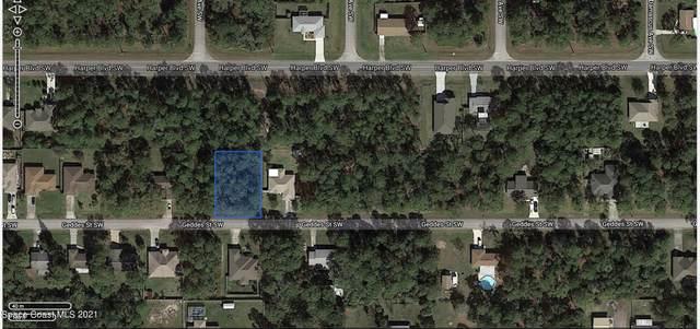 817 Geddes Street SW, Palm Bay, FL 32908 (MLS #915128) :: Vacasa Real Estate