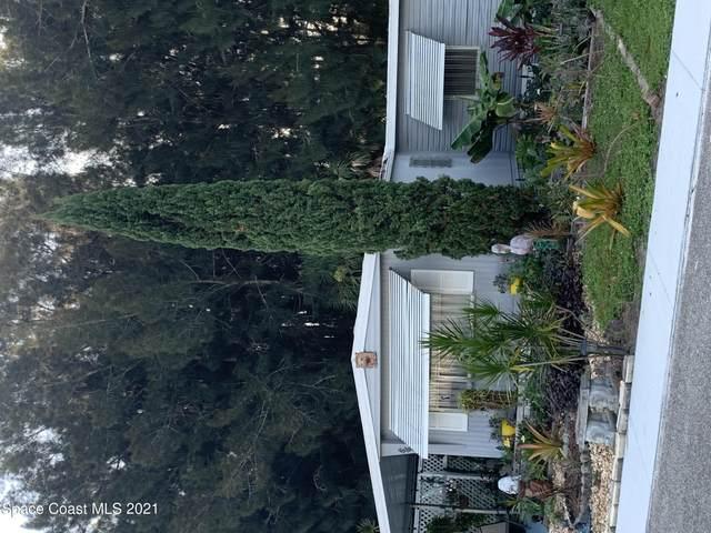 253 Borel Circle NE, Palm Bay, FL 32907 (MLS #915245) :: Engel & Voelkers Melbourne Central