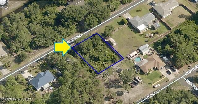 2041 Walsh Avenue SE, Palm Bay, FL 32909 (MLS #915344) :: Vacasa Real Estate