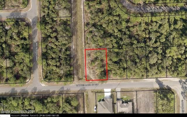 525 Garbelmann Street SW, Palm Bay, FL 32908 (MLS #915426) :: Vacasa Real Estate