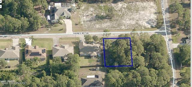 116 Haines Road SW, Palm Bay, FL 32908 (MLS #915452) :: Vacasa Real Estate