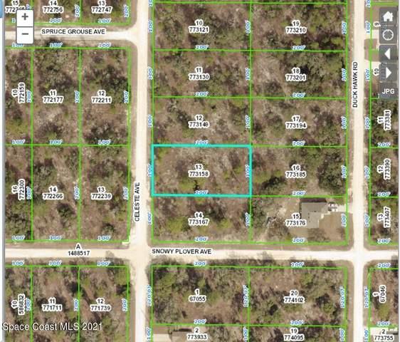 15088 Celeste Avenue, Weeki Wachee, FL 34614 (MLS #915453) :: Engel & Voelkers Melbourne Central