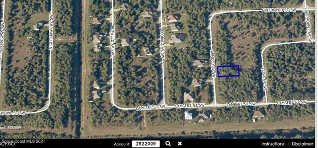 3365 Arnold Avenue, Palm Bay, FL 32908 (MLS #915501) :: Vacasa Real Estate