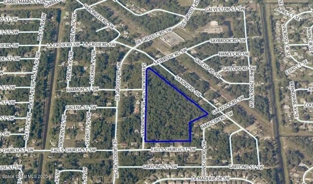000 Saybrook Road SW, Palm Bay, FL 32908 (MLS #915576) :: Vacasa Real Estate