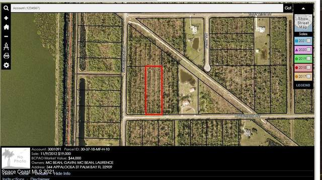 344 Appaloosa Street, Palm Bay, FL 32909 (MLS #915631) :: Vacasa Real Estate