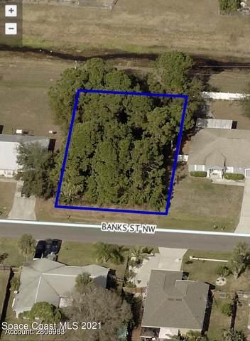 917 Banks Street NW #42, Palm Bay, FL 32907 (MLS #915681) :: Blue Marlin Real Estate