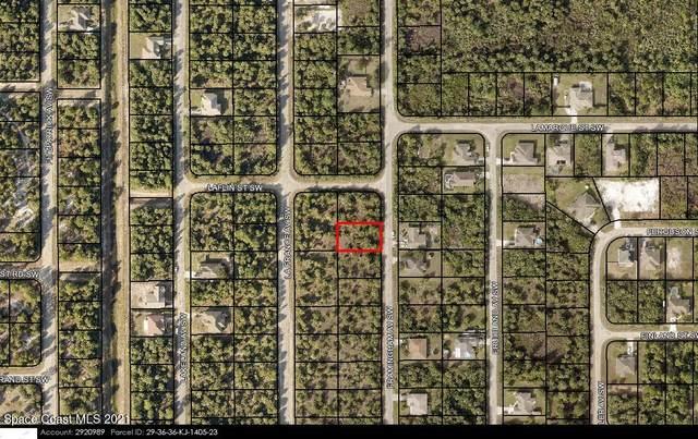 3214 Framingham Avenue SW, Palm Bay, FL 32908 (MLS #915714) :: Vacasa Real Estate