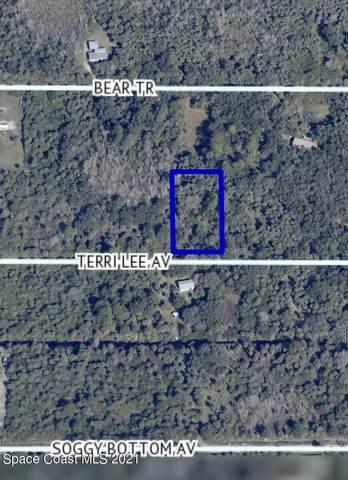0 Terri Lee Avenue, Cocoa, FL 32926 (MLS #915873) :: Blue Marlin Real Estate