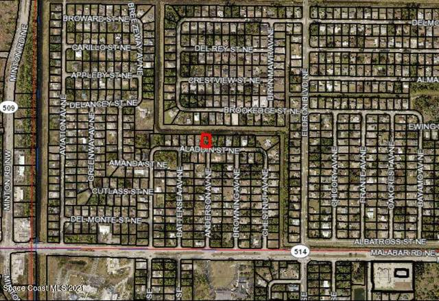 235 Aladdin Street NE, Palm Bay, FL 32907 (MLS #915915) :: Blue Marlin Real Estate