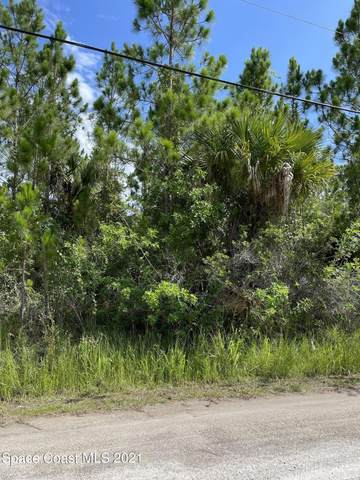 000 SW Sunshine And Libby Ave Avenue, Palm Bay, FL 32908 (MLS #915948) :: Vacasa Real Estate