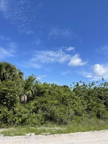 1548 Kiscoe Street SW, Palm Bay, FL 32908 (MLS #915959) :: Keller Williams Realty Brevard