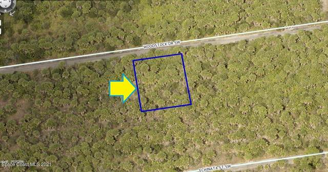 2964 Woodstock Drive SW, Palm Bay, FL 32908 (MLS #915996) :: Keller Williams Realty Brevard